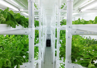 Container Farm Puts A Full Acre Of Lettuce In Your Backyard
