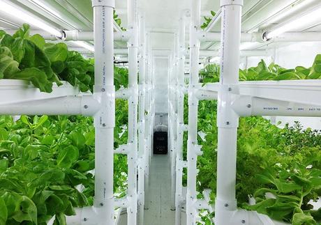 Cropbox-farms.jpg
